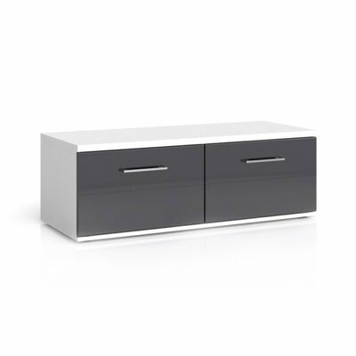 Avila 47 TV Stand Color: Gray