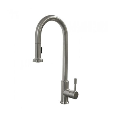 Clearwater Single Handle Pull Out Kitchen Faucet Finish: Brushed Stainless Steel