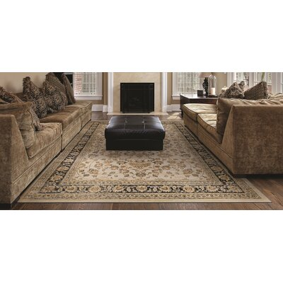 Cotaco Beige/Brown Area Rug Rug Size: Rectangle 53 x 76