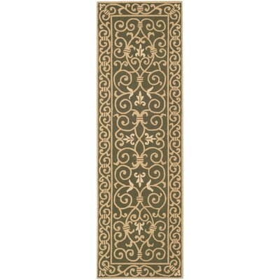 Brayton Green/Iron Gate Area Rug Rug Size: Runner 26 x 6