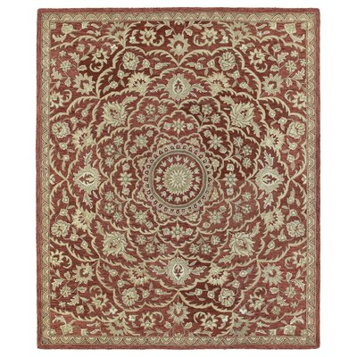 Chisolm Red Area Rug Rug Size: Rectangle 4 x 6