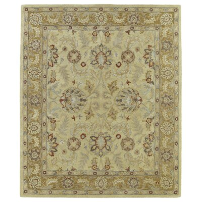 Chisolm Gold Area Rug Rug Size: Rectangle 9 x 12