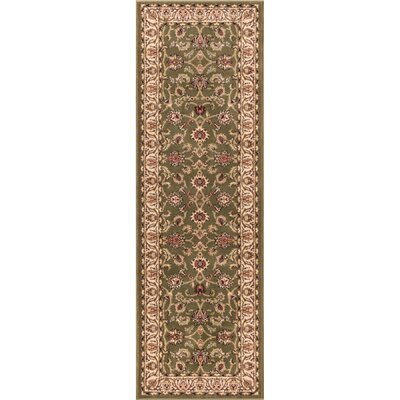 Janell Sarouk Border Green Area Rug Rug Size: Runner 27 x 910