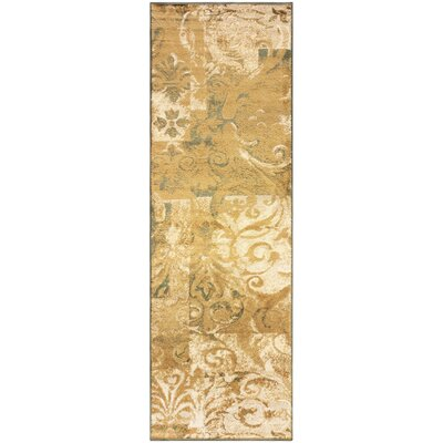 Burbank Scroll Gold Area Rug Rug Size: Runner 27 x 8
