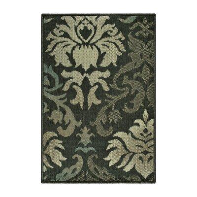 Buchanon Buchan Indoor/Outdoor Brown/Beige Area Rug Rug Size: Rectangle 2 x 3