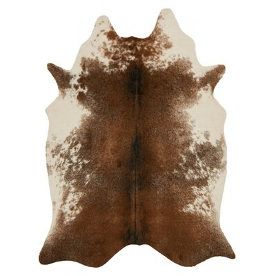 Summer Hand-Tufted Brown Area Rug Rug Size: Rectangle 5 x 66
