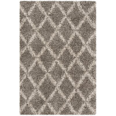 Quito Gray/Ivory Area Rug Rug Size: Rectangle 2 x 3