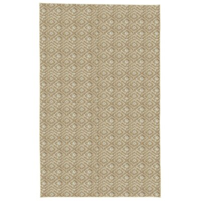 Palmyre Spice Area Rug Rug Size: 8 x 10