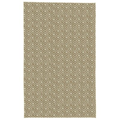 Palmyre Gray Area Rug Rug Size: 9 x 12