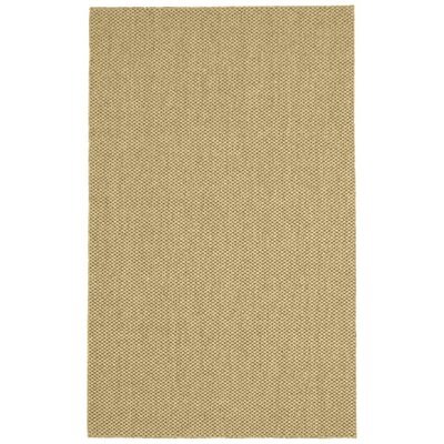 Volkman Brown Area Rug Rug Size: 5 x 8