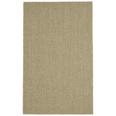 Volkman Parchment Area Rug Rug Size: 8 x 10
