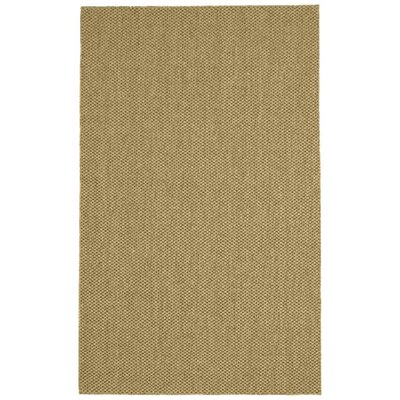 Parisot Tan Area Rug Rug Size: Runner 26 x 9