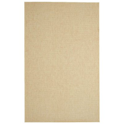 Paray Honey Area Rug Rug Size: 6 x 9