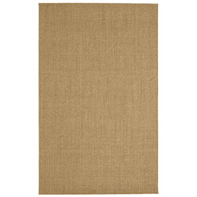 Paton Spice Area Rug Rug Size: 8 x 10