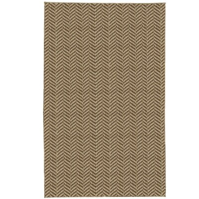 Paige Brown Area Rug Rug Size: 10 x 14