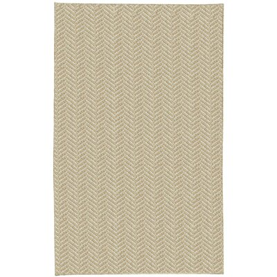 Paige Spice Area Rug Rug Size: 8 x 10