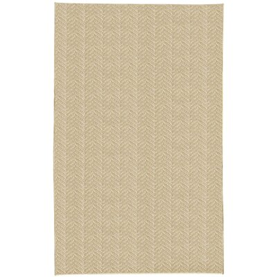 Paige Beige Area Rug Rug Size: 5 x 8