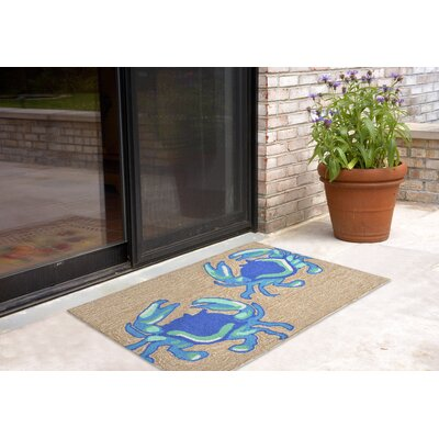 Anchoretta Hand-Tufted Blue Indoor/Outdoor Area Rug Rug Size: 18 x 26