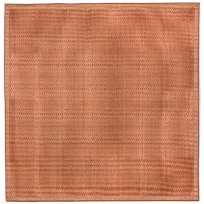 Clatterbuck Terra/Ivory Texture Indoor/Outdoor Area Rug Rug Size: Square 710