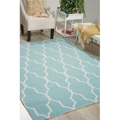 Astrid Aqua/Ivory Indoor/Outdoor Area Rug Rug Size: Rectangle 53 x 75