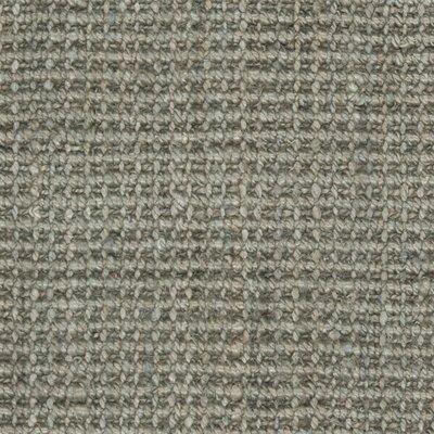 Calidia Hand-Loomed Gray Area Rug Rug Size: Rectangle 3 x 5