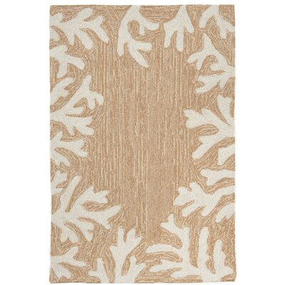 Claycomb Coral Border Hand-Tufted Neutral Indoor/Outdoor Area Rug Rug Size: Rectangle 36 x 56