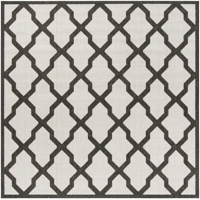 Kinsley Light Gray Area Rug Rug Size: Square 67