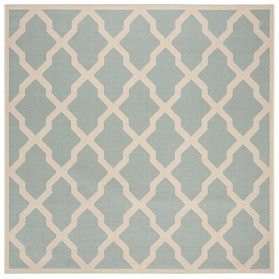 Cashion Aqua/Cream Area Rug Rug Size: Square 67