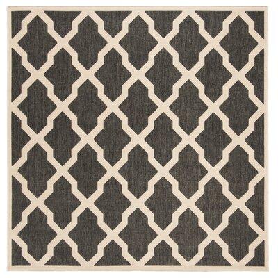 Callender Black/Creme Area Rug Rug Size: Square 67