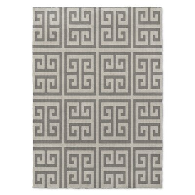 Ginger Gray Area Rug Rug Size: Rectangle 5 x 7