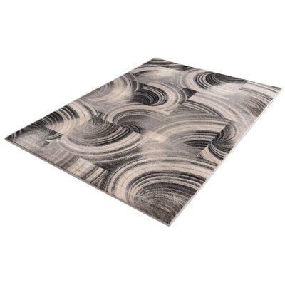 Devanna Polka Dots Modern Zig Zag Gray/Black Area Rug Rug Size: 53 x 73