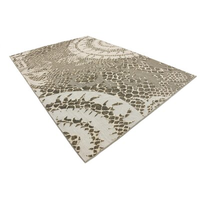Annice Cream Indoor/Outdoor Area Rug Rug Size: Rectangle 7 x 10