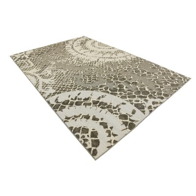 Annice Cream Indoor/Outdoor Area Rug Rug Size: Rectangle 6 x 9