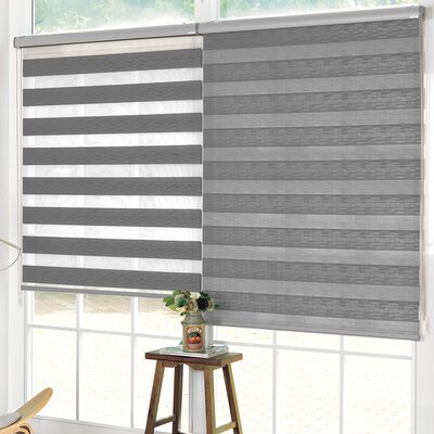 Pesce Day and Night Room Darkening Roller Shade Blind Size: 24W x 84L, Color: Gray