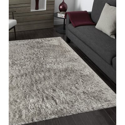 Sarina Light Gray Area Rug Rug Size: Rectangle 8 x 11