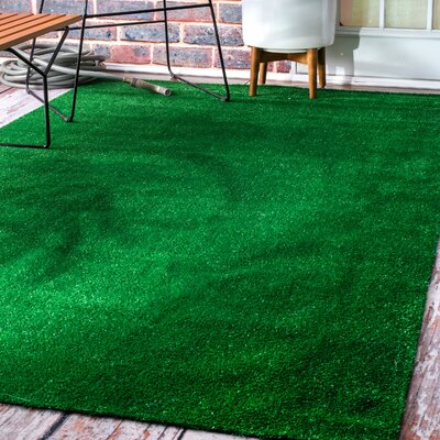 Falmouth Artificial Grass Green Area Rug Rug Size: Rectangle 8 x 10