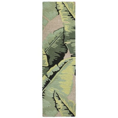 Arida Palm Hand-Tufted Green Indoor/Outdoor Area Rug Rug Size: Runner 23 x 8