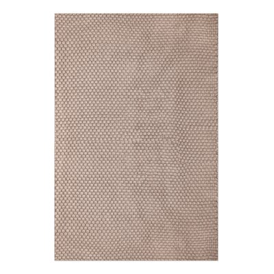 Drey Hand-Woven Beige Indoor/Outdoor Area Rug Rug Size: 5 x 8