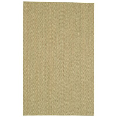 Dorothea�Natural Area Rug Rug Size: Runner 26 x 9
