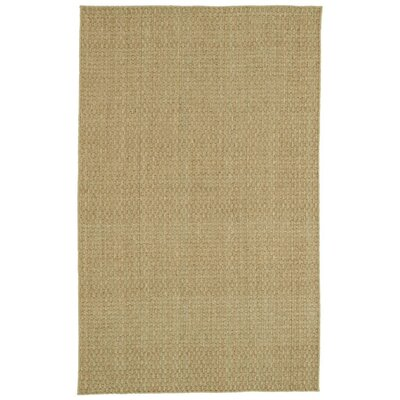 Faulk�Seagrass Natural Area Rug Rug Size: 8 x 10