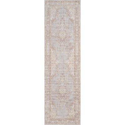 Sofian Gray Area Rug Rug Size: Runner 27 x 8