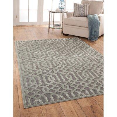 Cedar Grey/Silver Area Rug Rug Size: 53 x 76