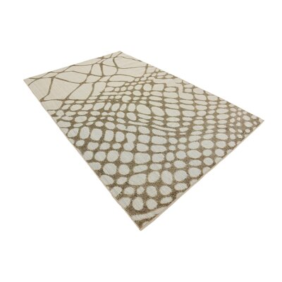 Jessie Cream Indoor/Outdoor Area Rug Rug Size: Rectangle 5 x 8