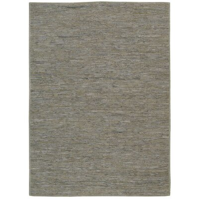 Santos Hand-Woven Gray Area Rug Rug Size: Rectangle 53 x 75