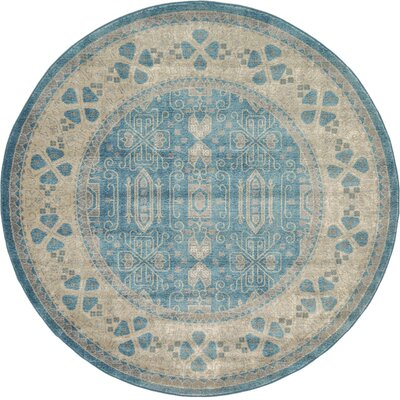 Brierfield Blue/Brown Area Rug Rug Size: Round 6