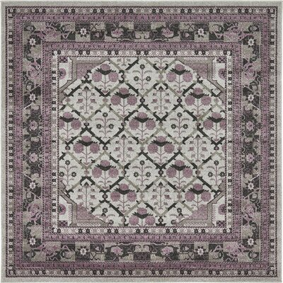 Irma Light Gray Area Rug Rug Size: Square 8