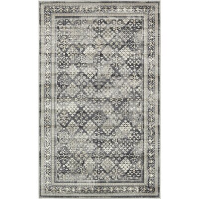 Jayleen Dark Gray Area Rug Rug Size: Rectangle 3 x 10