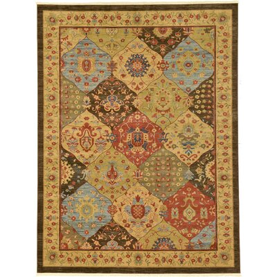 Jeannie Brown Area Rug Rug Size: Rectangle 9 x 12