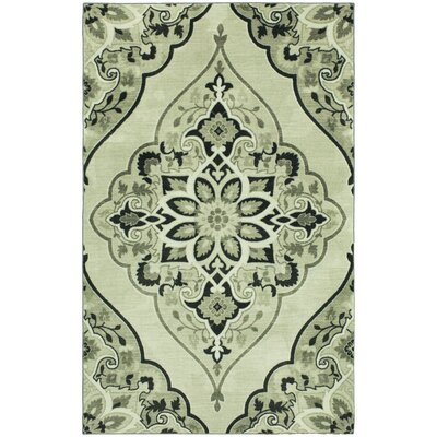 Carrick Charcoal Area Rug Rug Size: Rectangle 5 x 9