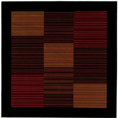 Judlaph Black/Brown Area Rug Rug Size: Square 53